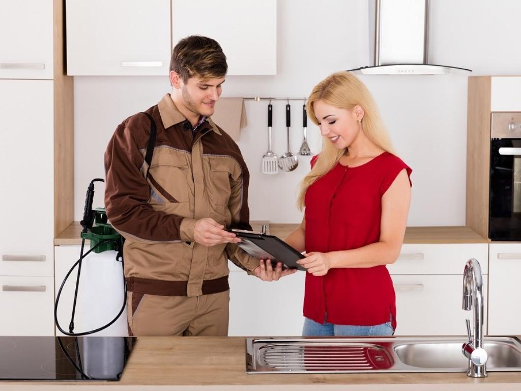 expert pest control Melbourne1213